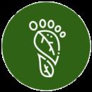 nature-connexion-commitments-carbon-footprint-offset
